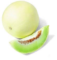Melon Rocio